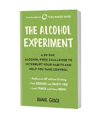 The Alcohol Experiment by Annie Grace